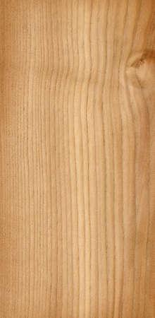 wood tree Stock Photo - 2479024