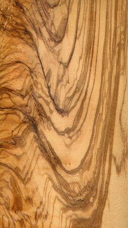 ulive wood Stock Photo - 2479031