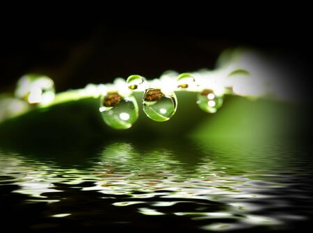 fine macro image of water drop background photo