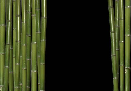 asian gardening: fine bamboo background with space for text Stock Photo
