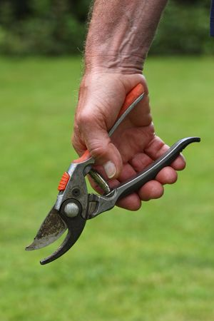 close up image of hand and garden tool background Stock Photo - 4880832