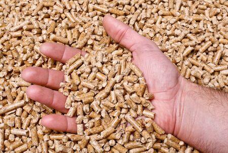 wood pellet: hand with natural wood pellet