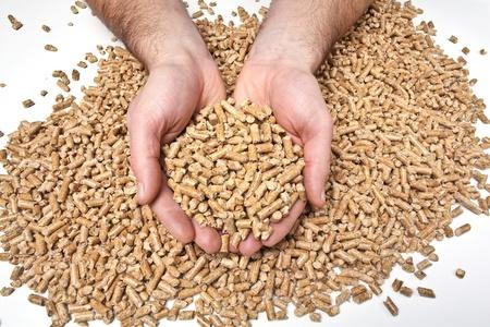 wood pellet: fine image of wood pellet Stock Photo