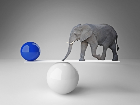 balance ball: elephant and  ball  in false balance
