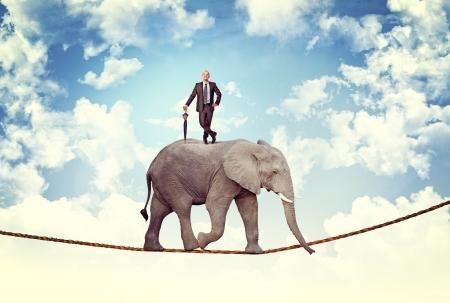elefante: hombre con paraguas en acr�bata elefante