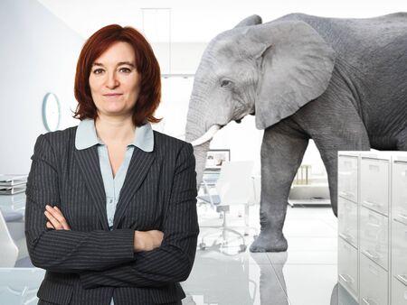 elefanten: Portr�t der Frau im B�ro und Elefanten Hintergrund Lizenzfreie Bilder