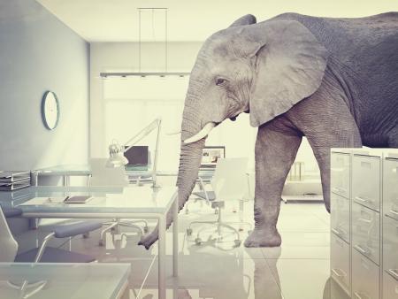 elephant�s: elefante en una habitaci�n de estilo vintage Foto de archivo