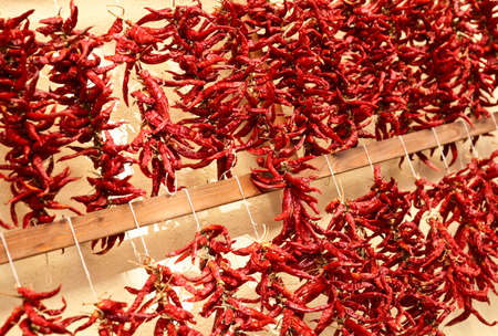 calabria: red hot chilly pepper background