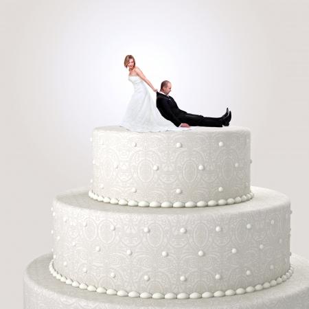 aliments droles: dr�le cake topper avec la jeune mari�e et le mari�