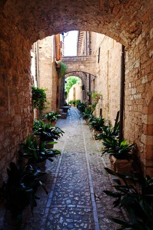 spello: view of spello medieval town in italy