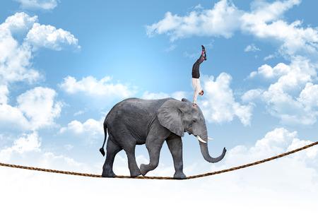 akrobatik: Mann auf Acrobat Elefanten abstraktes Konzept