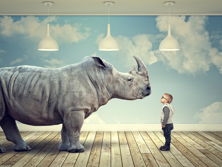 rhinoceros and kid in abstract 3d indoor Reklamní fotografie - 48599104