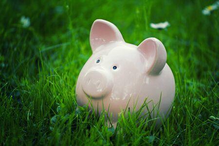 business funds: close up of classic piggybank money safer