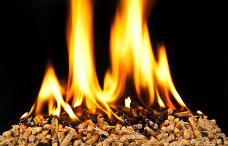 wood stove: burning wood pellet with flame