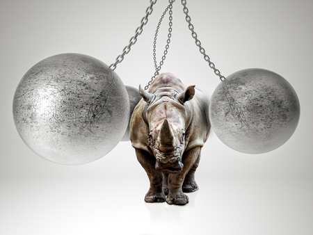 huge rhino and 3d metal ball