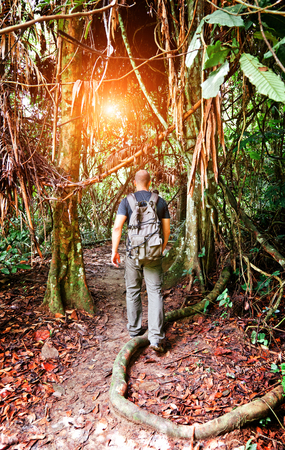 man walk in malaysia rainforest photo