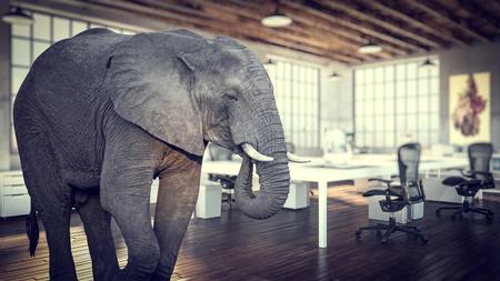 elephant in the room, modern industrial office 3d rendering image 版權商用圖片