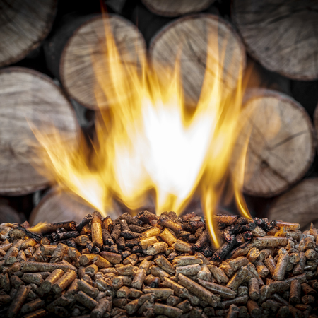 burning wood pellet and trunks background