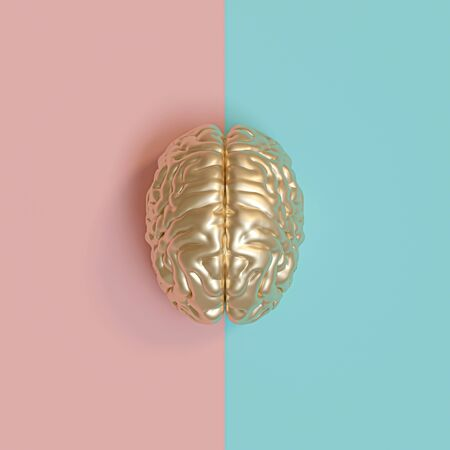 3d rednering image of a gold human brain, blue and pink background, concept of diversity between the sexes. flat lay style. Stockfoto - 126130040