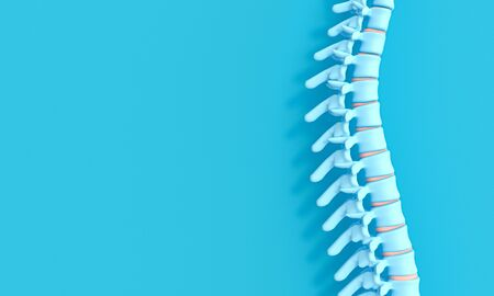 3d render image of a spine on a blue background. concept of health and back problems. Stockfoto