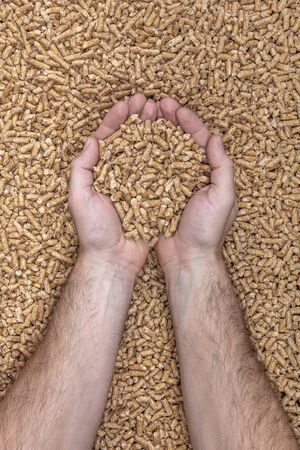 clasped hands contain natural wood pellets used for stoves and boilers. Alternative energy concept.
