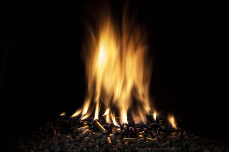 wood pellet burning with a live flame. ecological fuel concept. Stockfoto
