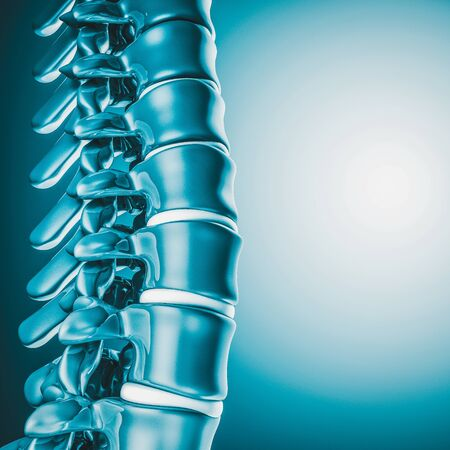 3d image render of a spine. concept of medicine and health. 스톡 콘텐츠