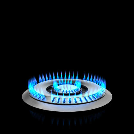 kitchen double cooker gas blue flame. 3d render