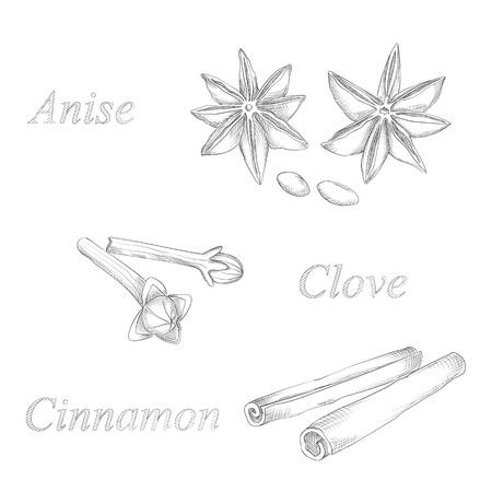 kaneel anijs en kruidnagel de hand dawing schets Stock Illustratie
