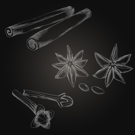 Spices and herbs set. Hand drawing elements on the dark background.