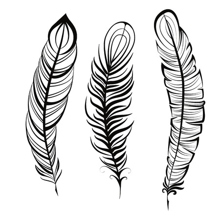abstract animal: Vintage feather isolated on white background Hand drawn vector illustration. Template for your design Illustration