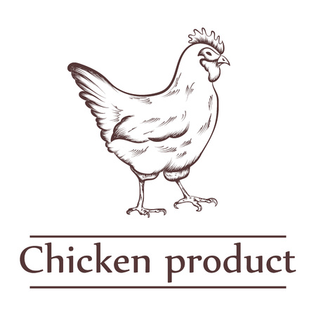 Graphical illustration of chicken products with inscription