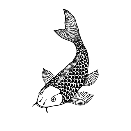 A beautiful koi carp fish illustration in monochrome. Symbol of love, friendship and prosperity. Illustration