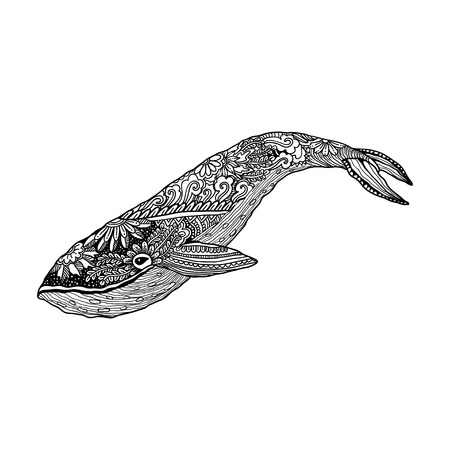 Whale,  whale print, adult coloring page. artistically Whale, ornamental patterned Whale illustration. Sea Animal collection. Whale Sketch, tattoo, posters, t-shirt design.