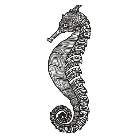 indian fish: stylized black Sea Horse.  illustration isolated on white background. Sketch Sea collection Illustration