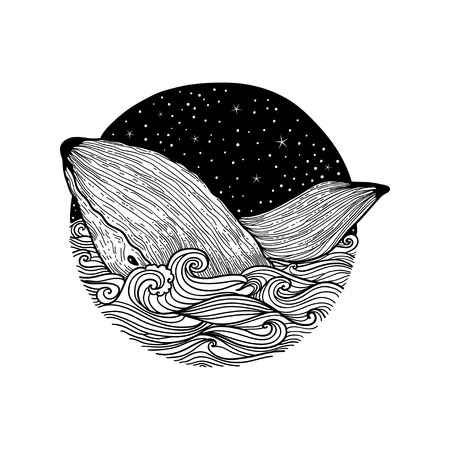 Whale jumping out of the waves on a night starry sky and curl waves background with doodle zentangle elements, design for clothing print, cards,invitations, printing cover.isolated on white background 矢量图像