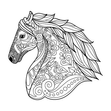 Stylized Hand Drawn Head Horse Coloring Page For Adults Vector ...