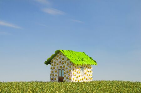 concept of an ecological house Stock Photo - 8605008
