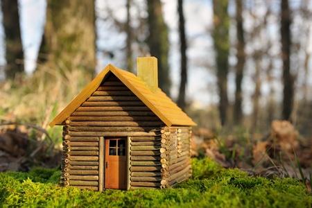 wenig Grün Haus Standard-Bild