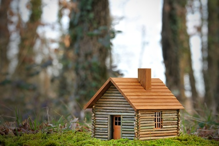 chalets: a small wooden house ecological.