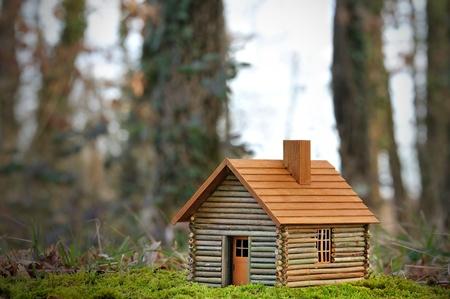 ein kleines Holzhaus ökologisch.