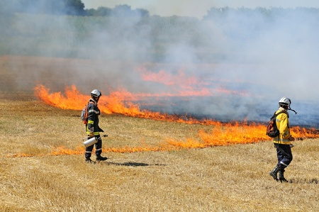 fire fighting equipment: training of firefighters to a fire of stubble fields Stock Photo