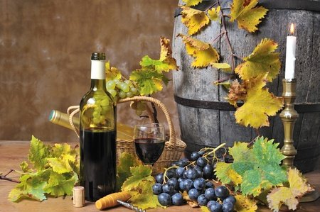 oenology: a tasting of red wine        Stock Photo