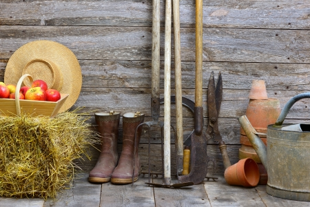 shed: a garden shed with all the tools of the gardener Stock Photo