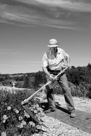 mows: a farmer who mows the flowers