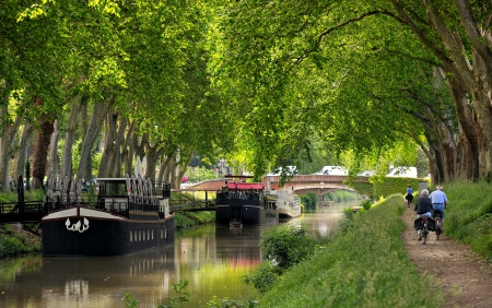 barge: walk along the canal of midi in Toulouse, France