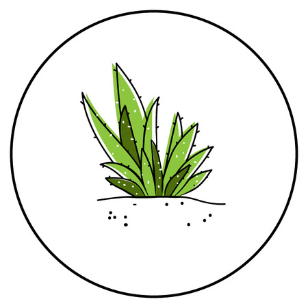 Aloe vector icon