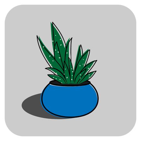 Aloe vera in the pot vector illustration