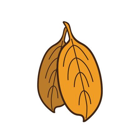 Autumn leaves vector illustration on white background Ilustração