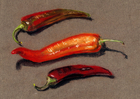 Red pepper. Hand draw illustration Stock Photo